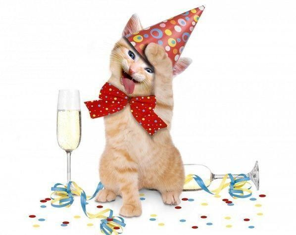 alors chat ces qui..on fête..hi.hi.